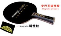 prasidha-ambawa-magnetic-off-plus