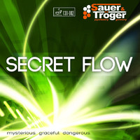sauer-troger-secret-flow